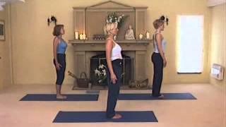 Йога для удовольствия для начинающих   Путь к самоисцелению
