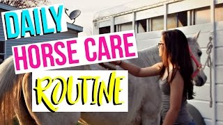 Updated Daily Horse Care Routine