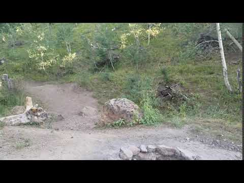 Video Of Wahlstrom Hollow (Dispersed), ID