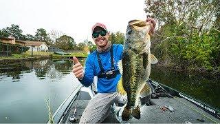 Hunting Down GIANT Florida Bass