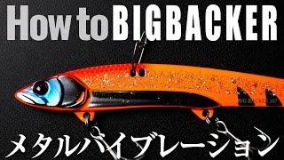 【ショアジギング】ビッグバッカー 徹底解説!メタルバイブレーション編 / ショアキャスティング / 村上 祥悟