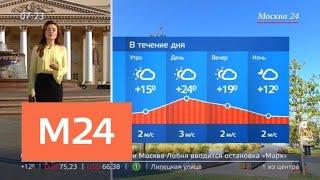 """""""Утро"""": облачная без осадков погода ожидается в Москве 17 августа - Москва 24"""