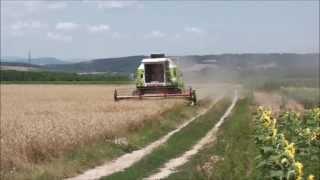 Wheat Harvest 2013 Claas Dominator 106