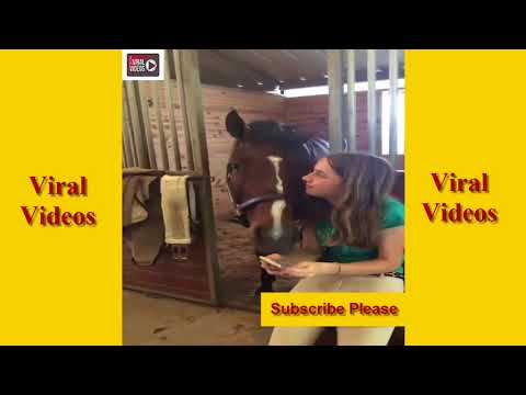 Hot Girl Want to Making Love With Horse | Best Animal Funny Videos in This Week#AnimalFun