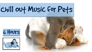 6 Hours of Chill Out Music for Your Pet. For Hyper, Stressed or Anxious Pets.