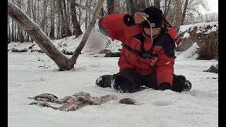 ЭТИ КАРАСИ УТАСКИВАЮТ УДОЧКИ И РВУТ ЛЕСКУ!!!! Рыбалка по первому льду! Карась со льда!
