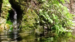 Nature Sounds Relaxing Waterfall Sounds Hd 1080p
