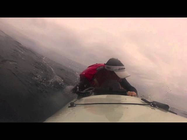 Great White Shark knocks kayaker into the Ocean. Crazy Footage!!!