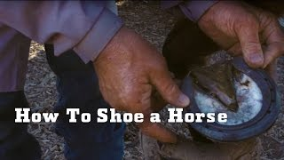 Los Padres: How to Shoe a Horse | YETI