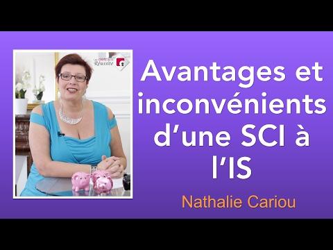 Avantages et inconvénients d'une SCI à l'IS