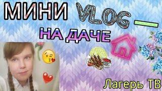 МИНИ VLOG-НА ДАЧЕ/Лагерь ТВ