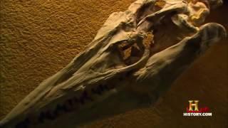 Тайны доисторических монстров HD 2017
