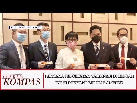 rencana percepatan vaksinasi uji klinis yang belum rampung-rampung - berkas kompas bag