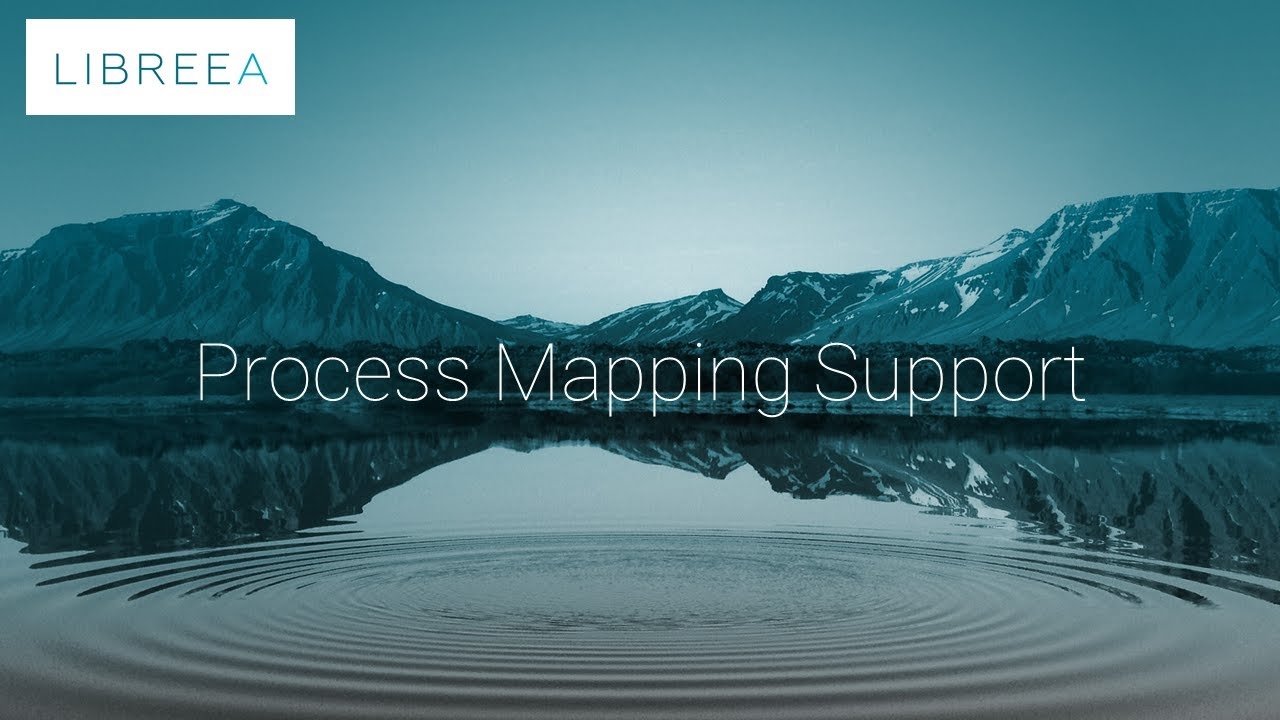 Process Mapping Support