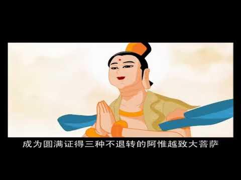 Đại Nguyện Của Pháp Tạng Tỳ Kheo, Phim Hoạt hình Phật Giáo, Pháp Âm HD