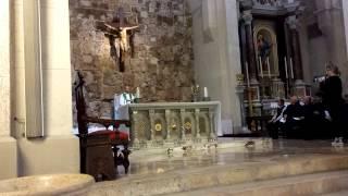 preview picture of video 'Annuncio ufficiale creazione Diocesi Sora-Cassino-Aquino-Pontecorvo'