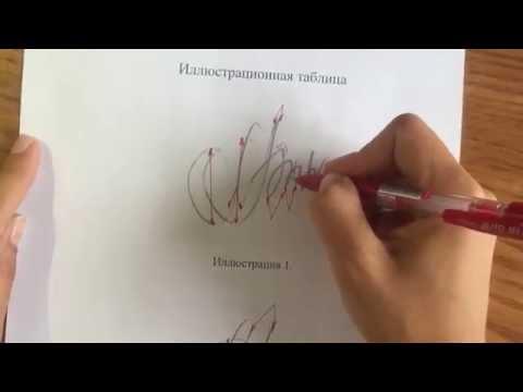 Почерковедческая экспертиза - установление исполнителя подписи