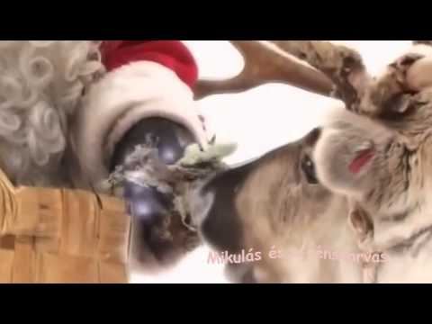 Saoudian társkereső