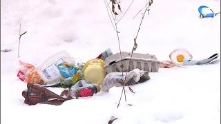 Жители Кречевиц жалуются на качество уборки мусора в микрорайоне