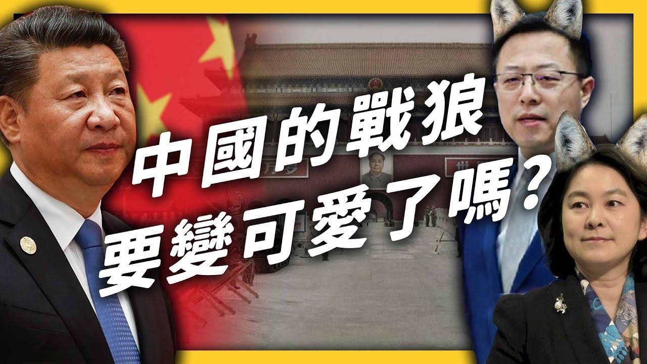 中國要捨棄「戰狼外交」改用「可愛外交」了?中國的戰狼到底在戰什麼?《 左邊鄰居觀察日記 》EP 047|志祺七七