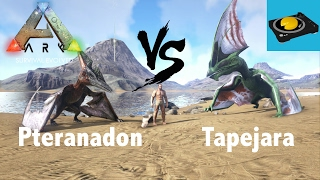 Crypto Video About Ark Tapejara The ark id for tapejara is tapejara_character_bp_c, this is commonly referred to as a creature id. crypto video about ark tapejara