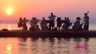 Прекрасная мелодия скрипки