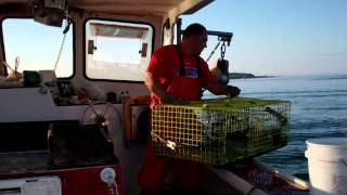 Lobster Fishing in Maine....(HD)