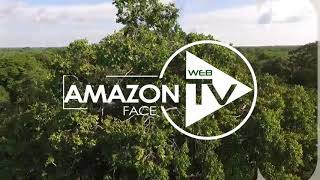 ASSISTA AGORA A PRIMEIRA TV DO NORTE 100% ON LINE (Amazon Web TV)