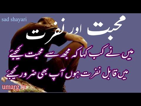 Urdu shayari lover