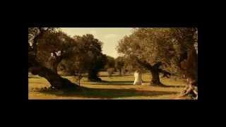 Mine Vaganti - Serseri Mayınlar