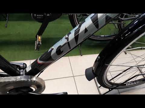Giant Tourer Trekkingrad 28 Zoll RADWELT Apolda Fahrradgeschäft