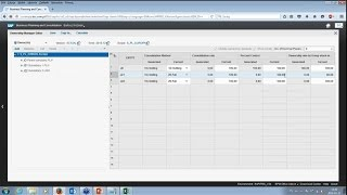 SAP BPC - Consolidation of financial statements with SAP Business Planning and Consolidation