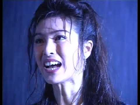 Bao Thanh Thiên 56/80 (tiếng Việt), DV chính: Địch Long, Huỳnh Nhật Hoa; TVB/1995