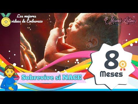 7348d3316 OCTAVO MES DE EMBARAZO