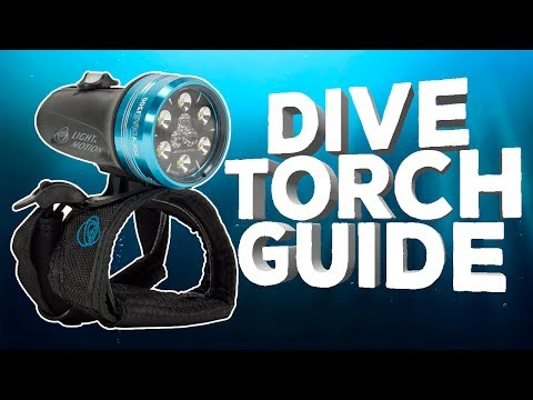 Dive Torch Guide