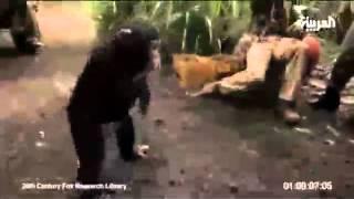 Never mock a monkey قرد يطلق النار على جنود