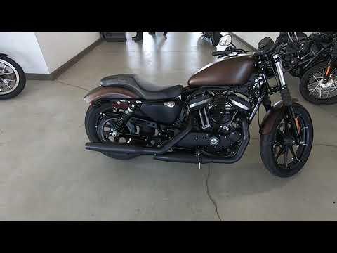 2019 Harley-Davidson Iron 883 XL 883N