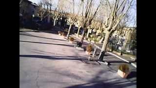 preview picture of video 'giro su Vejano con il drone..'