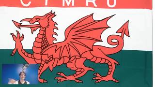Is This A Country? Wales Divided (Confusing Countries #1)