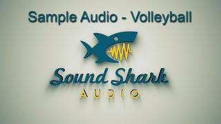 Sound Shark Sample Audio - Volleyball