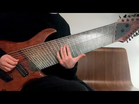 Watch This Man Play a 14-String Guitar