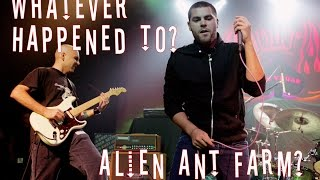 Whatever Happened to Alien Ant Farm?
