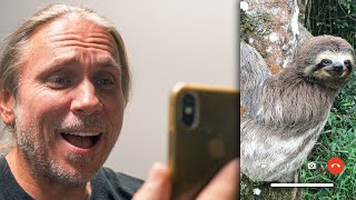 I FACETIME WITH OUR SLOTH!! FIRST MEETING!! | BRIAN BARCZYK by Brian Barczyk