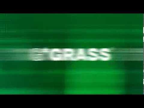 GRASS Dynapro image movie