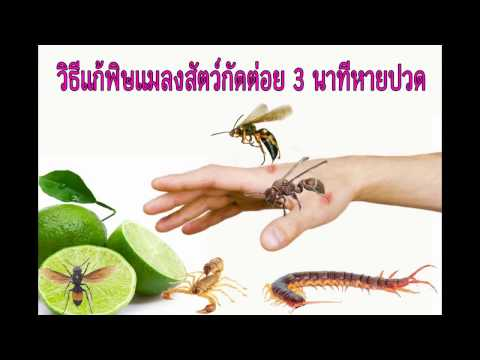 Worming หาคน