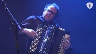 Richard Galliano - Waltz  For Nicky (Radio 1 Jazz Sessie)