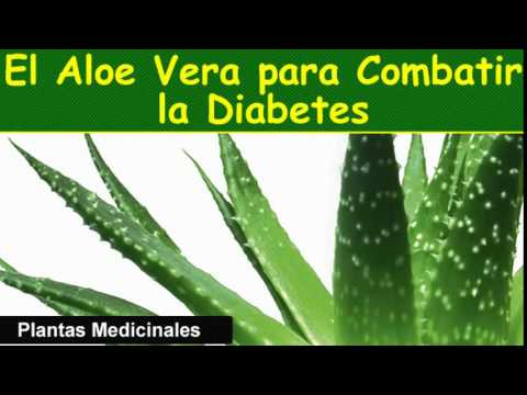 Co je dyslipidémie u diabetiků