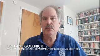 Message from Dr. Paul Gollnick, Chair