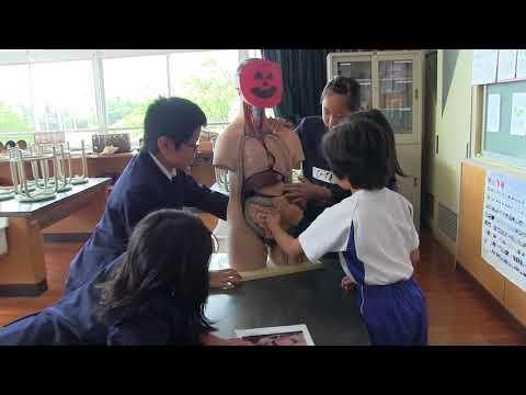 種子島の学校活動:南界小学校中種子養護学校との交流学習