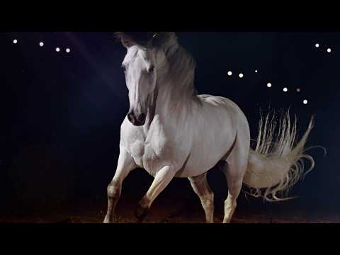 Apassionata Horse Theme Park in Munich